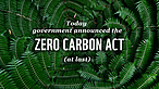 Ferns with text overlaid<br />© WWF-New Zealand